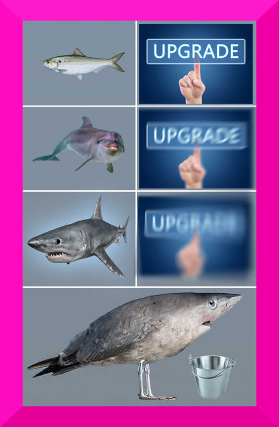 So, there's some sharks and a shark bird and an UPGRADE UPGRADE UPGRADE